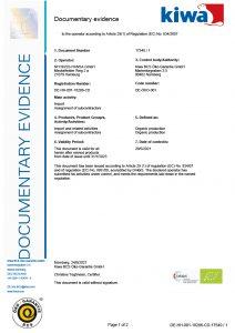ISO Zertifikat DE 2020